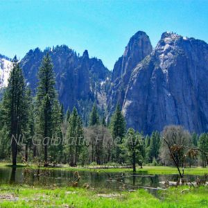 Yosemite Valley in Spring