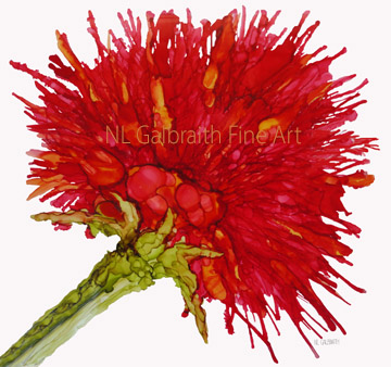 "Fine Art Oversized Crimson Red Flower Graphic5x5.7"".res72"