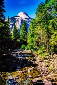 The Back Side Of Half Dome, Yosemite #5