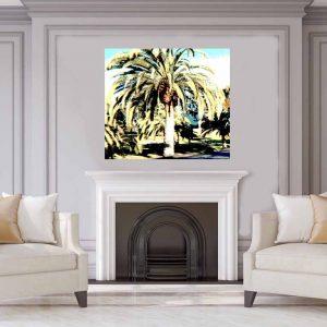 Palm Park 1