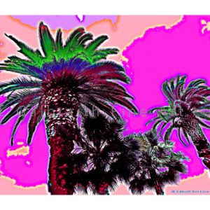 Purple Palm Tops